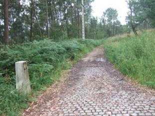 006 Waymark and cobbled road